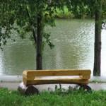 Скамейка у пруда и две березы