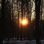 Закат в февральском парке