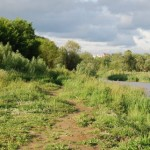 Вечерний пейзаж с рекой