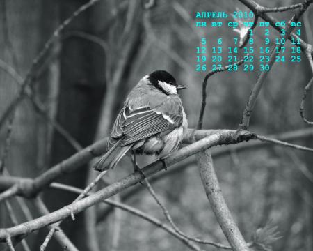 календарь для рабочего стола апрель 2010г