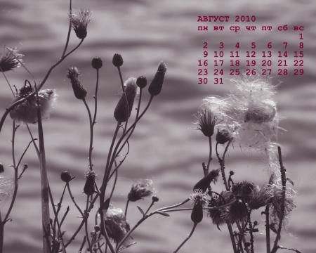 календарь обои август 2010 года