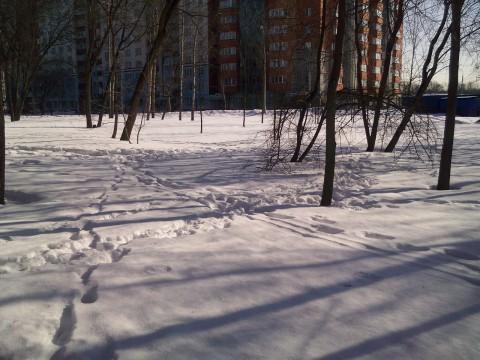 снег весенним утром