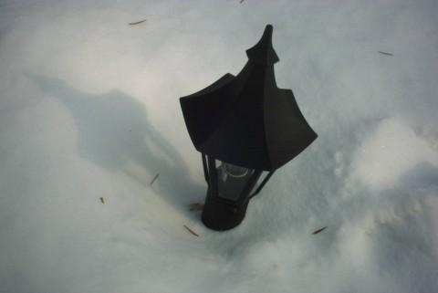 белый снег - черный фонарь