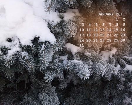 обои-календарь рабочего стола на январь 2011 года с фото ели