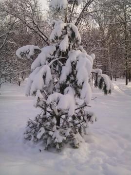 снегу насыпало