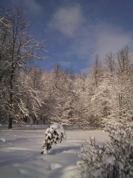 зимний пейзаж с ярким голубым небом