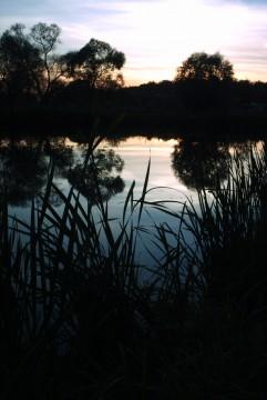 закат на пруду