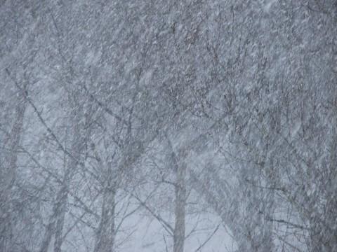пейзаж снег идет фото с балкона