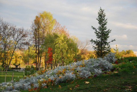 фото парка осенью