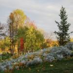Осеннее фото парка