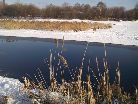 берега реки на фотографии с телефона