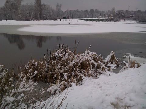 фото 1 января