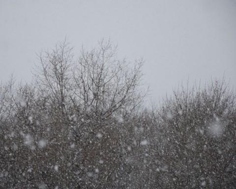 обои-фото-снегопад