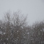 А снег идет, а снег идет…