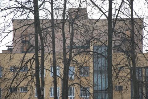 дом и деревья